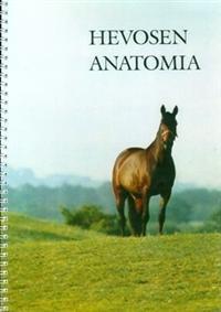 Hevosen anatomia